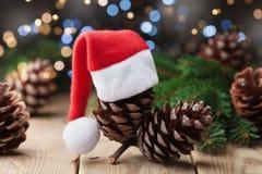 Kiefernkegel verzierte Sankt-Hut und Tannenbaumast auf rustikalem Hintergrund Weihnachtsmann auf einem Schlitten Lizenzfreies Stockbild