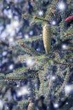 Kiefernkegel Weihnachtsbaum Stockfotografie