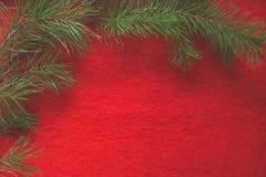 Kiefernniederlassung auf dem roten woolen Hintergrund lizenzfreies stockfoto