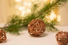 Kiefernniederlassung mit Weihnachtslichtern im Hintergrund stockfotografie