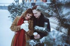 Kiefernniederlassungen bedeckten Schnee mit jungen Paaren auf Hintergrund Stockbild