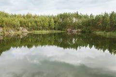 Kiefernwald reflektiert im quary See Stockfotografie