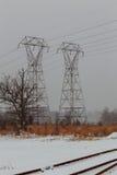 KiefernWeihnachtsbaum-Winterniederlassung im Schnee Lizenzfreie Stockbilder