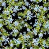 Kiefernweihnachtsbaumaste Nahtloses Muster für Weihnachtsauslegung watercolor vektor abbildung