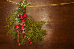 Kieferzweige mit Weihnachtsbeeren Stockbild