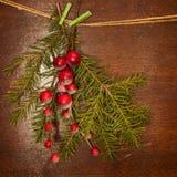 Kieferzweige mit Weihnachtsbeeren Stockfotografie