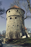 Kiek in de Kök an artillery tower in Tallinn, Estonia Stock Photos