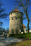 Kiek in de Kök an artillery tower in Tallinn, Estonia Royalty Free Stock Photo