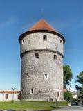 Kiek in DE Kok Tower royalty-vrije stock fotografie
