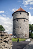 Kiek-in-de-kok tower in Tallin Fotografie Stock Libere da Diritti