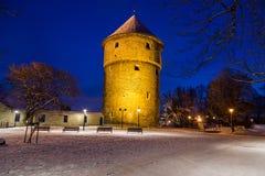 Kiek em de Kök em Tallinn na noite Imagem de Stock Royalty Free