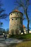 Kiek en de Kök une tour d'artillerie à Tallinn, Estonie Photo libre de droits