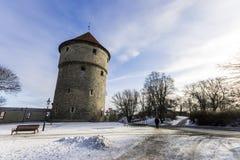 Kiek en la torre de Kok, Tallinn, Estonia fotos de archivo