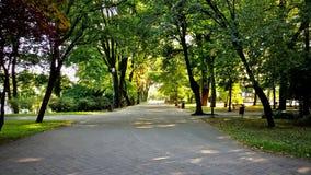 Kielce - парк города стоковое фото