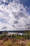 在Kielder的大天空 库存照片