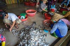 Kien Giang,越南- 2016年12月6日:Yellowstripe大量鱼手工生产线在Rach Gia城市, Kien Giang,湄公河三角洲,南 库存照片