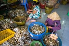 Kien Giang, Βιετνάμ - 6 Δεκεμβρίου 2016: Το Yellowstripe scad αλιεύει τη χειρωνακτική γραμμή παραγωγής στην πόλη της Rach Gia, Ki Στοκ Εικόνες