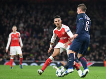 Kieran Gibbs Royalty Free Stock Photos