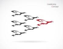 Kierdel dzikich kaczek latać ilustracji