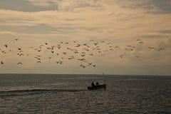 Kierdel ptaki i rybak łódź Zdjęcia Stock