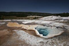 Kierowa wiosna, Yellowstone park narodowy Zdjęcia Stock