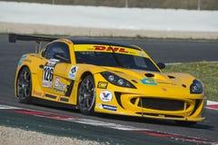 Kierowca Andrea Marchesini GT filiżanka Zdjęcie Royalty Free