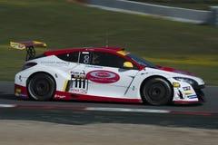 Kierowca Andrea Mosca GT filiżanka Zdjęcie Royalty Free