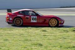 Kierowca Jose Luis Garcia GT filiżanka zdjęcia royalty free