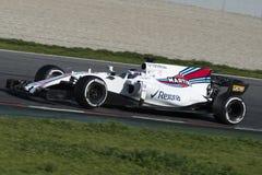 Kierowca lancy przespacerowanie Drużynowy Williams fotografia royalty free