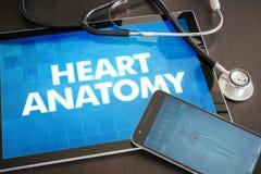 Kierowej anatomii diagnozy medyczny pojęcie dalej (kardiologia odnosić sie) Fotografia Royalty Free