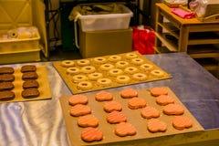 Kierowi i round ciasteczka wewnątrz na deaktywaci wsiadają Zdjęcia Royalty Free
