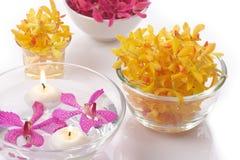 kierownicza świeczki orchidea Fotografia Royalty Free