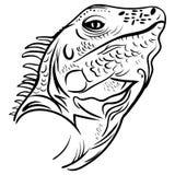 Kierowniczy iguana profil, nakreślenie wektorowy tatuaż Obrazy Royalty Free