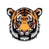 kierowniczy tygrys royalty ilustracja