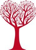 kierowy drzewo Obraz Royalty Free