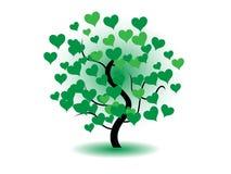 kierowy drzewo Zdjęcia Royalty Free