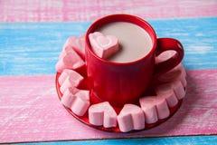 Kierowy marshmallow i czekolada obrazy stock