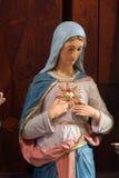 kierowy niepokalany Mary zdjęcie royalty free