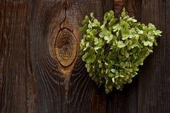 Kierowy tło ogrodzenie Zdjęcie Stock