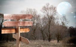 Kierunku wskaźnik na tle drzewa i nocne niebo obraz royalty free