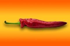Kies één rode paprika paprika op oranje achtergrond uit Royalty-vrije Stock Afbeelding