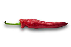 Kies één rode paprika paprika op witte achtergrond uit Stock Fotografie