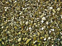 Kiesel auf dem Strand Lizenzfreie Stockbilder