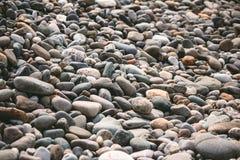 Kiesel auf dem Strand Lizenzfreies Stockbild