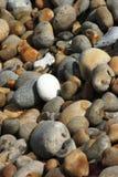 Kiesel auf dem Strand Lizenzfreies Stockfoto