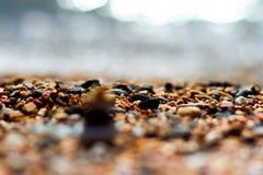 Kiesel auf dem Strand stockfotos