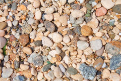 Kiesel auf dem Strand, Abschluss Stockfotografie