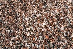 Kiesel auf dem Strand Beschaffenheit des Seeufers Das adriatische Meer Stockbild