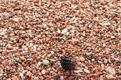 Kiesel auf dem Strand Beschaffenheit des Seeufers Das adriatische Meer Stockbilder