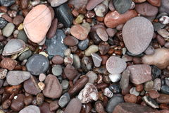 Kiesel auf einem Strand Stockbilder